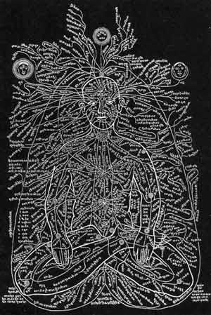 The Human Chakra System